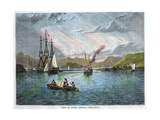 View of Punta Arenas, Costa Rica, C1880 Giclee Print