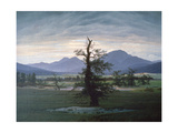 The Solitary Tree, 1823 Giclee Print by Caspar David Friedrich