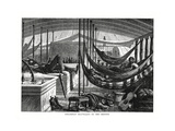 Steamboat Travelling on the Orinoco, South America, 1877 Giclee Print