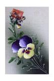 French Flower Postcard, C1900 Giclee Print