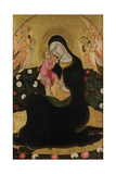 The Virgin and Child with Angels (Madonna of Humilit), Mid of the 15th C Giclee Print by  Sano di Pietro