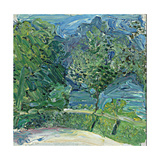 Lakeside Road Near Gmunden, 1907 Giclee Print by Richard Gerstl