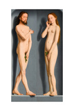 Adam and Eve (Sedano Family Triptych, Exterior Panel) Giclee Print by Gerard David