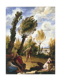 The Parable of the Wheat and the Tares Giclee Print by Domenico Fetti