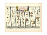 Britannia Atlas: the Continuation of the Road from London to Aberystwyth, 1675 Giclee Print by John Ogilby