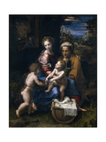 The Holy Family with John the Baptist and Saint Elizabeth (La Perl) Giclée-tryk af Raphael,