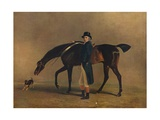 The Hon. Peniston Lamb with His Horse Assassin, 1929 Giclee Print by Benjamin Marshall