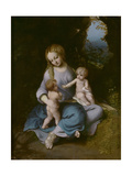 Virgin and Child with John the Baptist as a Boy Giclee Print by  Correggio