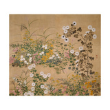 Flowering Plants in Autumn, 18th Century Giclee Print by Ogata Korin