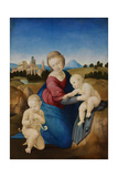 The Madonna and Child with the Infant Baptist (The Esterházy Madonn) Reproduction procédé giclée par  Raphael