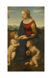 Madonna and Child with Saint John the Baptist (La Belle Jardinièr) Reproduction procédé giclée par  Raphael