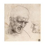 Study of Two Warriors' Heads for the Battle of Anghiari Giclee Print by  Leonardo da Vinci