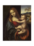 Virgin and Child, 1510-1525 Giclee Print by  Giampietrino