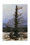 Oak Tree in the Snow Giclee Print by Caspar David Friedrich