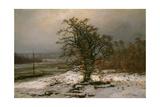 Oak Tree by the Elbe in Winter Giclee Print
