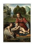 The Virgin and Child with the Infant Saint John Giclee Print by Bernardino Luini
