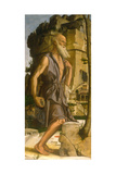Saint Jerome, 1482 Giclee Print by Bartolomeo Montagna