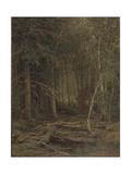 Backwoods Reproduction procédé giclée par Ivan Ivanovich Shishkin