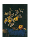 Still Life with Fruit Giclee Print by Willem van Aelst