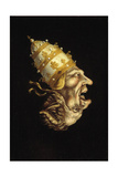 Pope-Devil Giclee Print