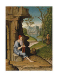 Saint Jerome in the Desert Giclee Print by Bartolomeo Montagna