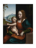 Madonna of the Cherries Giclee Print by  Giampietrino