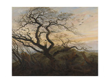 The Tree of Crows Giclee Print by Caspar David Friedrich