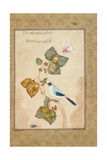 A Bird on a Hazel Branch Giclee Print by Muhammad Shafi Abbasi