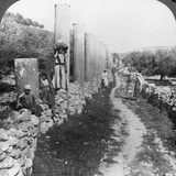 Herod's Street of Columns, Samaria, Palestine (Israe), 1905 Photographic Print by  Underwood & Underwood
