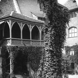 Lime Tree in a Courtyard, Nuremberg, Bavaria, Germany, C1900s Photographic Print by  Wurthle & Sons