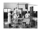 Milk Production, Zagreb, Yugoslavia, 1952 Giclee Print