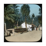 Road from Colombo to Galle, Colombo, Ceylon, Late 19th or Early 20th Century Giclee Print