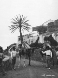 Men with Camels, Las Palmas, Gran Canaria, Canary Islands, Spain, C1920S-C1930S Photographic Print