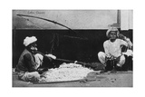 Cotton Cleaners, India, 20th Century Giclee Print