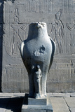 Giant Statue of the Ancient Egyptian Falcon-Headed God Horus, Edfu, Egypt Photographic Print