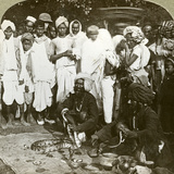 Snake Charmer, Calcutta, India, C1900s Photographic Print by  Underwood & Underwood