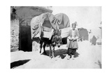 Persian Donkey Transport, Baghdad, Iraq, 1917-1919 Giclee Print