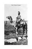 Camel Cavalry Transport, India, 20th Century Giclee Print