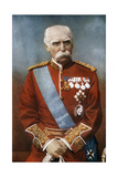 Field Marshal Sir Donald Martin Stewart, British Soldier, C1900 Giclee Print by Elliott & Fry