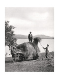 Loading Hay onto a Wagon on the Shores of Loch Lomond, Scotland, 1924-1926 Giclee Print by Donald Mcleish