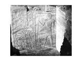 Egyptian Hieroglyphs, Egypt, 1863-1864 Giclee Print by Emmanuel Rouge