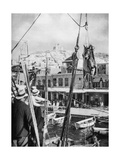 The Shipping of Mules, Syros Island, Greece, 1937 Giclee Print by Martin Hurlimann