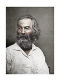 Walt Whitman, American Poet, C1880S Giclee Print by MATHEW B BRADY