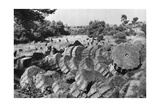 Temple of Jupiter and Zeus, Olympia, Greece, 1937 Giclee Print by Martin Hurlimann