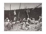 Sheep Shearing, Russia, C1875-C1877 Giclee Print by Ivan Boldyrev