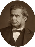 Professor Thomas Henry Huxley, 1880 Photographic Print by  Lock & Whitfield