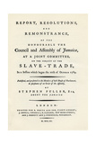A Remonstration of the Subject of the Slave Trade, 1789 Giclee Print