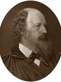 Alfred Tennyson, Dcl, Frs, English Poet Laureate, 1883 Photographic Print by  Lock & Whitfield