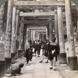 Coming and Going under Long Rows of Sacred Torii, Shinto Temple of Inari, Kyoto, Japan, 1904 Photographic Print