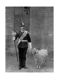 The Drum Major and Goat of the 1st Battalion the Welch Regiment, 1896 Giclée-tryk af WM Crockett